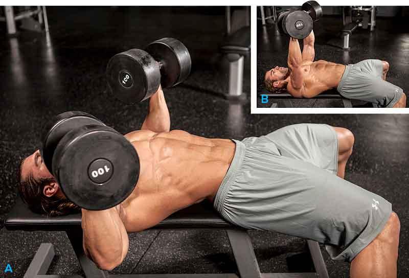 Best Chest Exercises Flat Bench Dumbbell Press